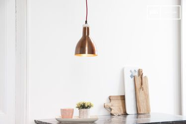 Copper designlamp