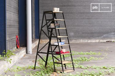 Eight-step studio ladder
