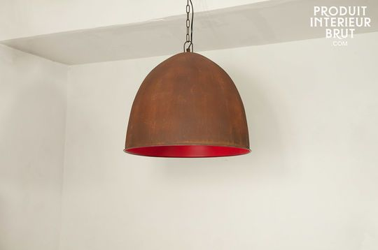 Raspberry Steel hanglamp