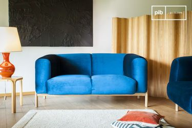 Viela Velvet Sofa